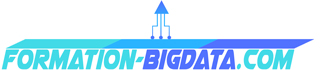 Formation Big Data Logo
